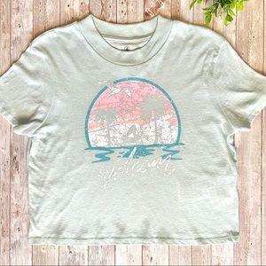 Volcum Cropped Palm Sunset Tee Shirt PacSun